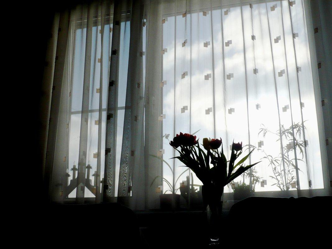 За окном плывут облака... - Жанна Литуева