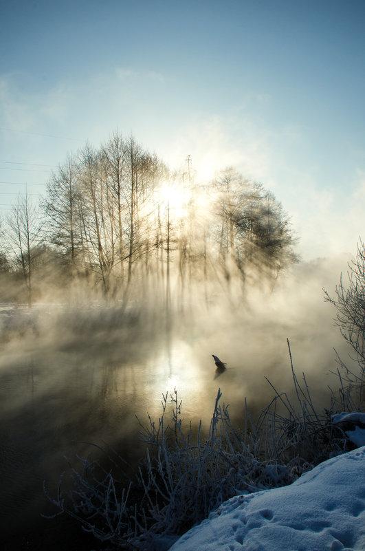 Туман на реке - Елизавета Митрофанова
