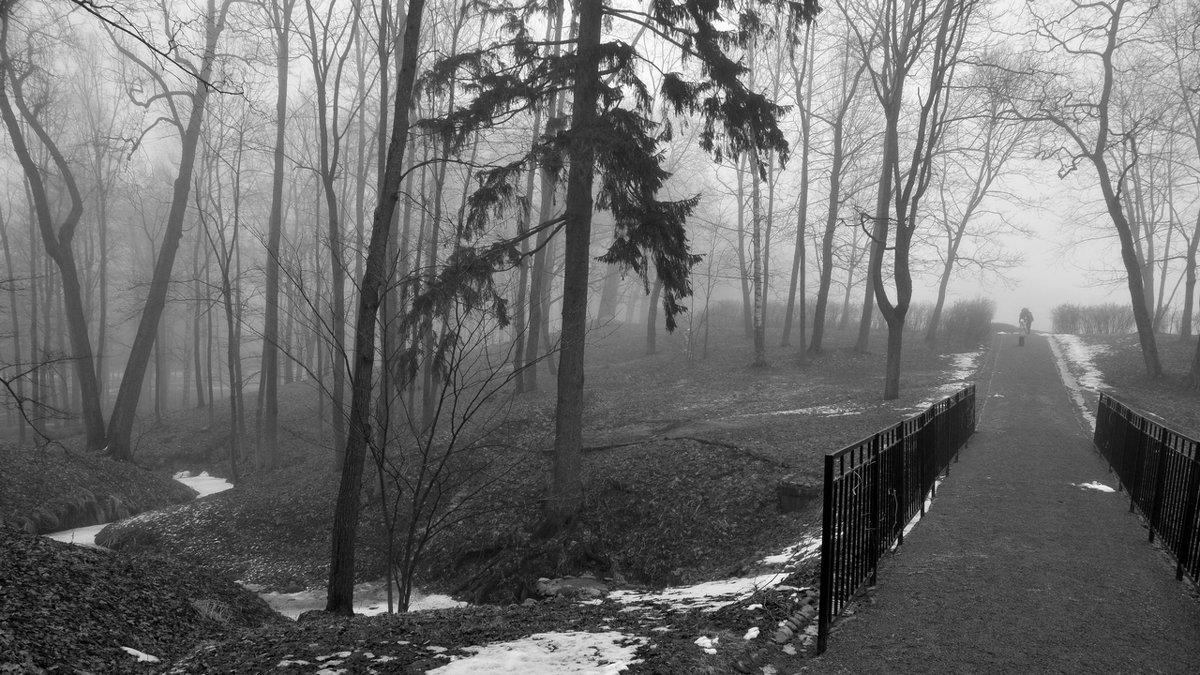 Там.., за туманами... - tipchik