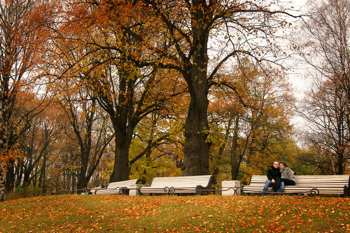 Осень в Таврическом саду - Юлия Фотолюбитель