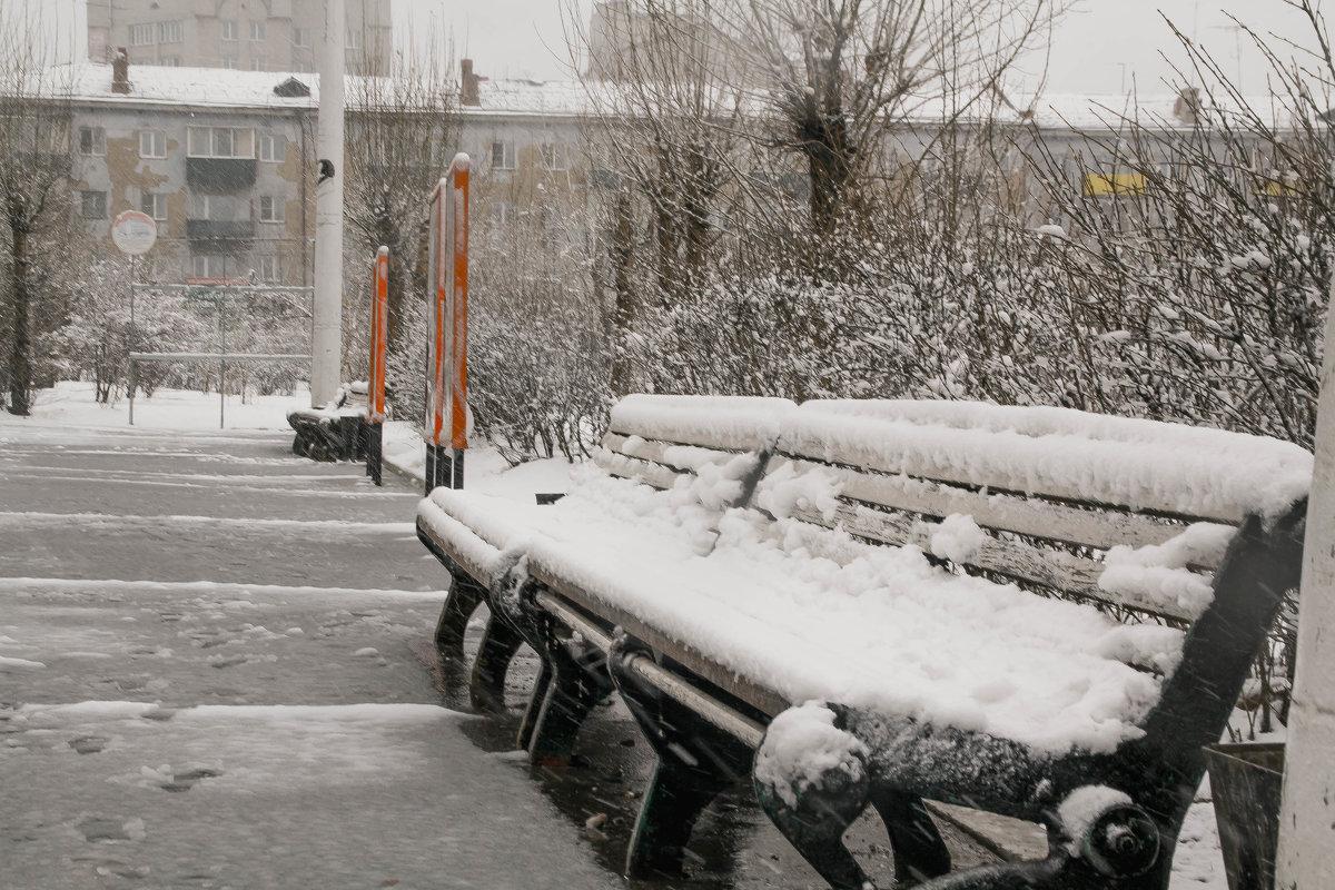 Снег в Чите - Марина Кириллова
