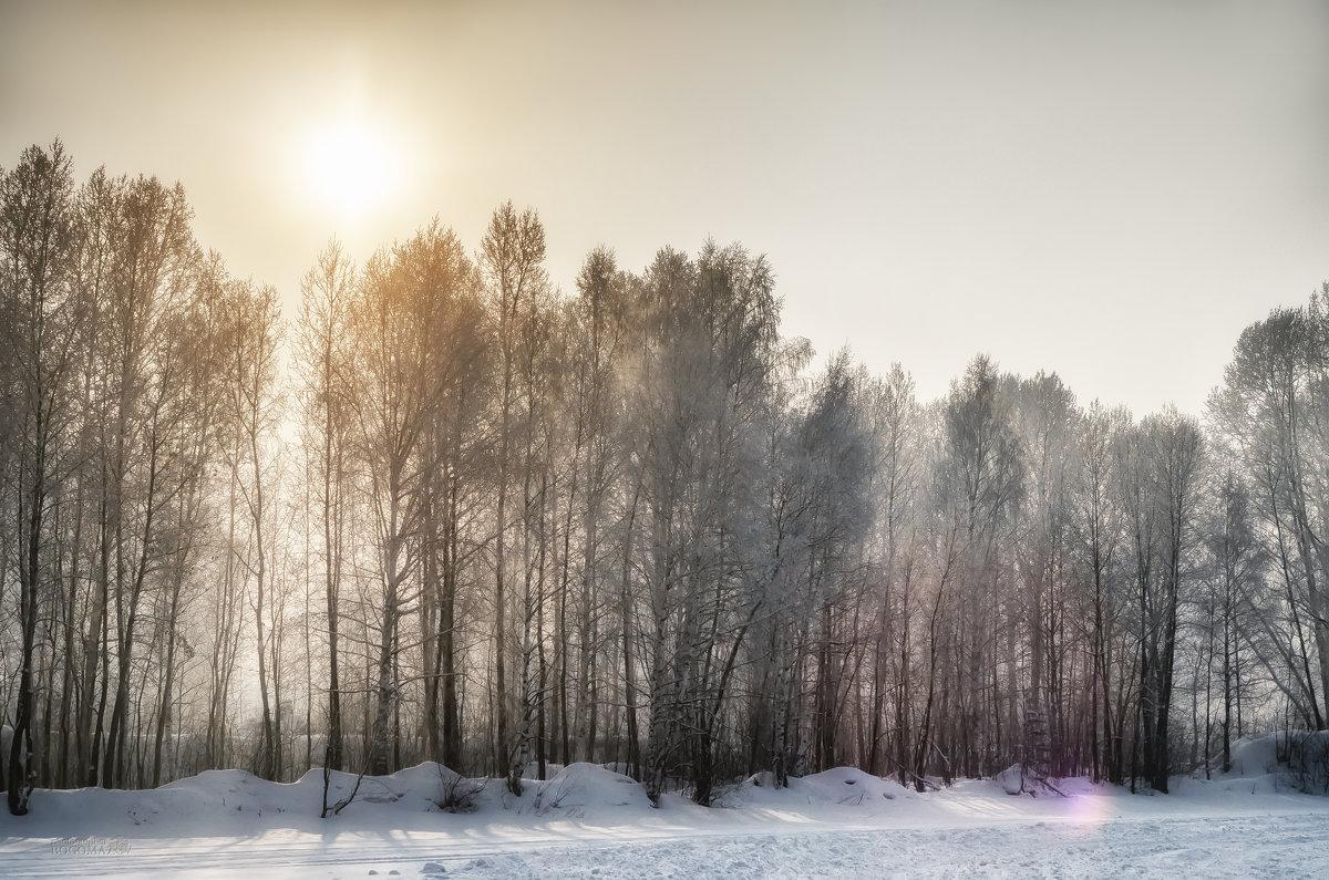 Зима - Кирилл Богомазов