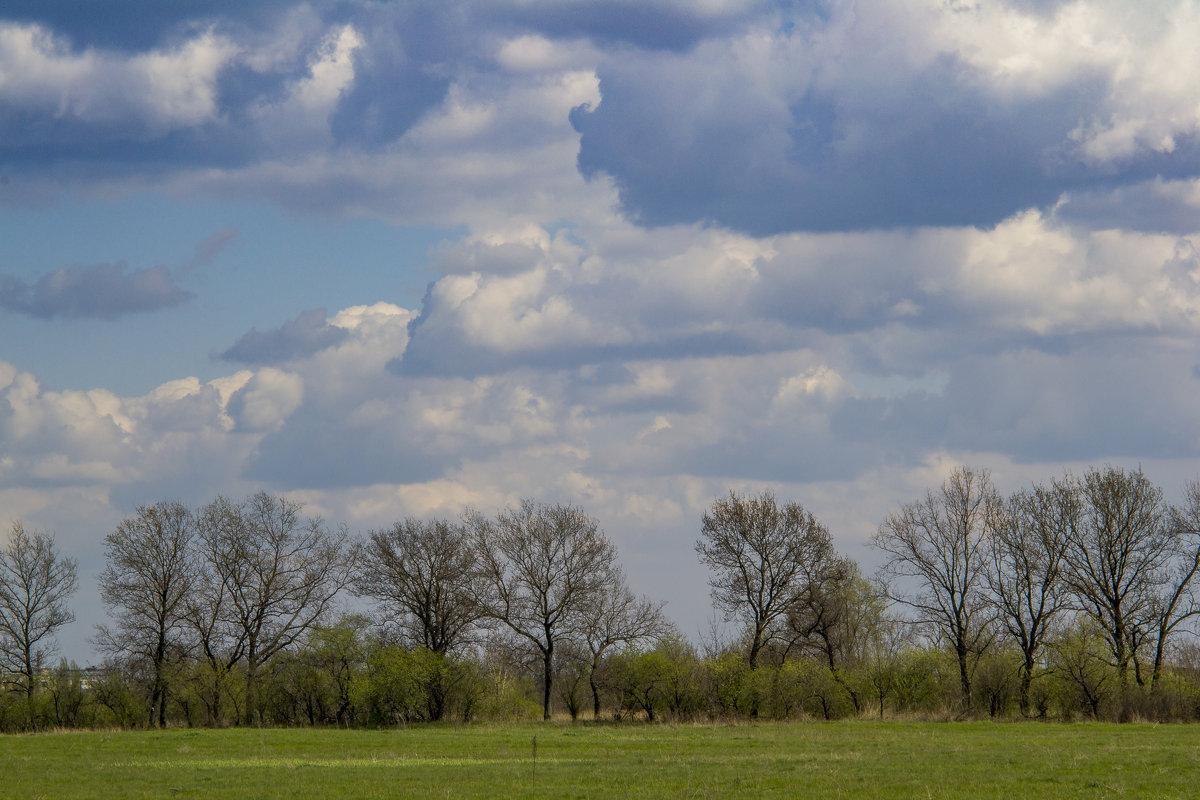 небо - Alex G.