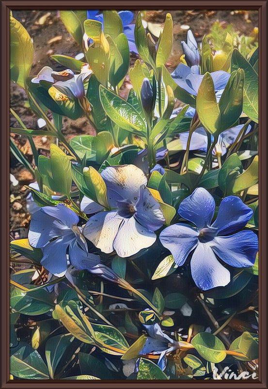 """картина """"Весенние цветы"""" - Владимир Бровко"""