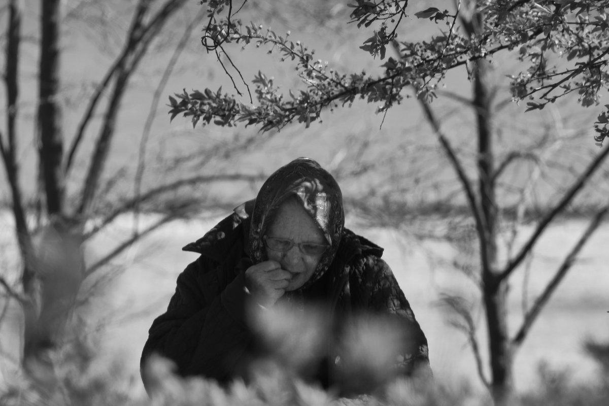 Бабушка - Александр Довгий