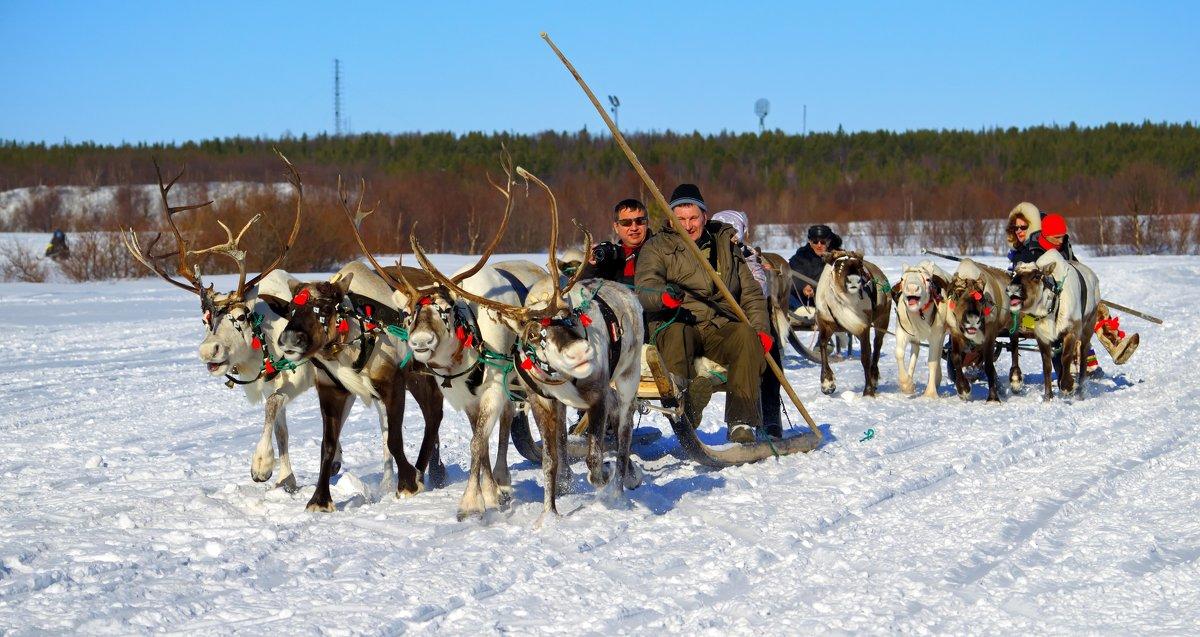Праздник Севера. с.Ловозеро Мурманской области - Tatyana Nemchinova