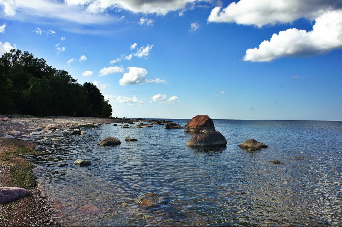 На побережье Финского залива - Елена Павлова (Смолова)