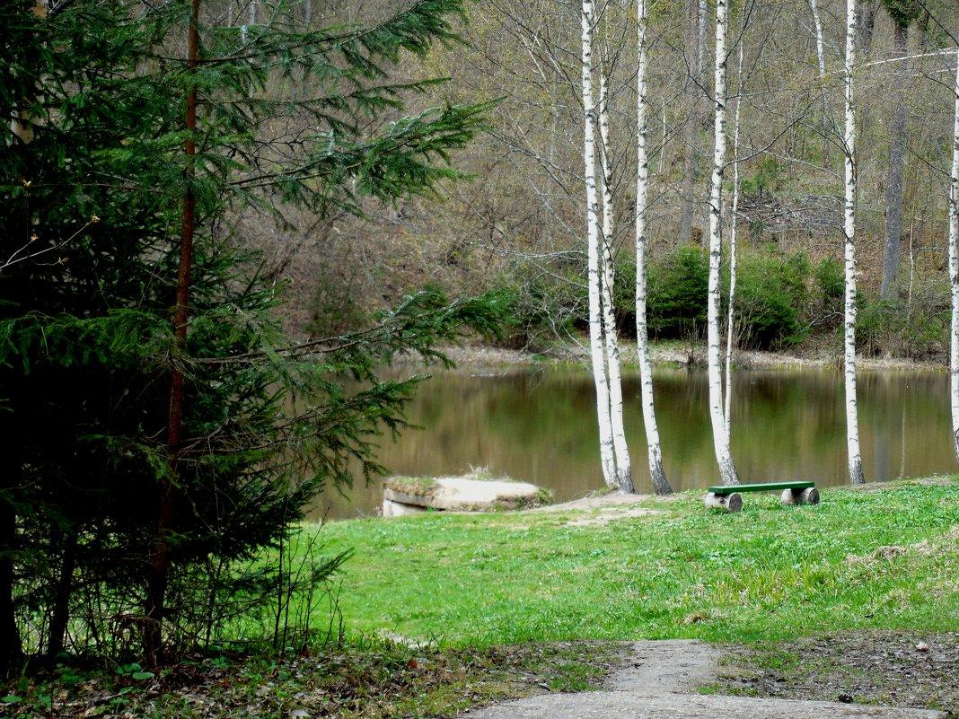 Блоковский    пруд - Мила