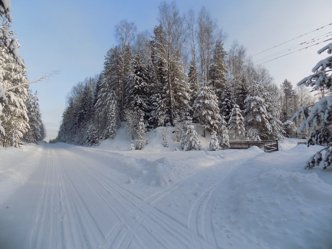 Зимняя сказка - Андрей .