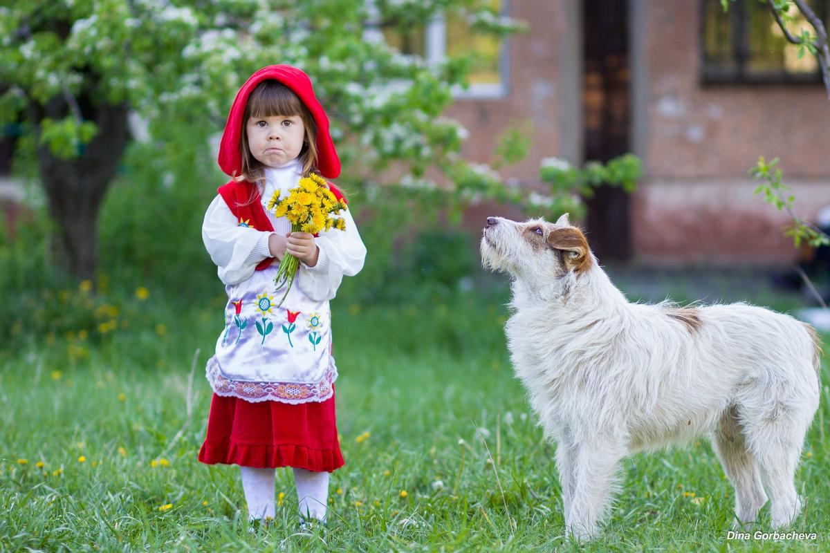 Сашуля и седой волк) - Дина Горбачева