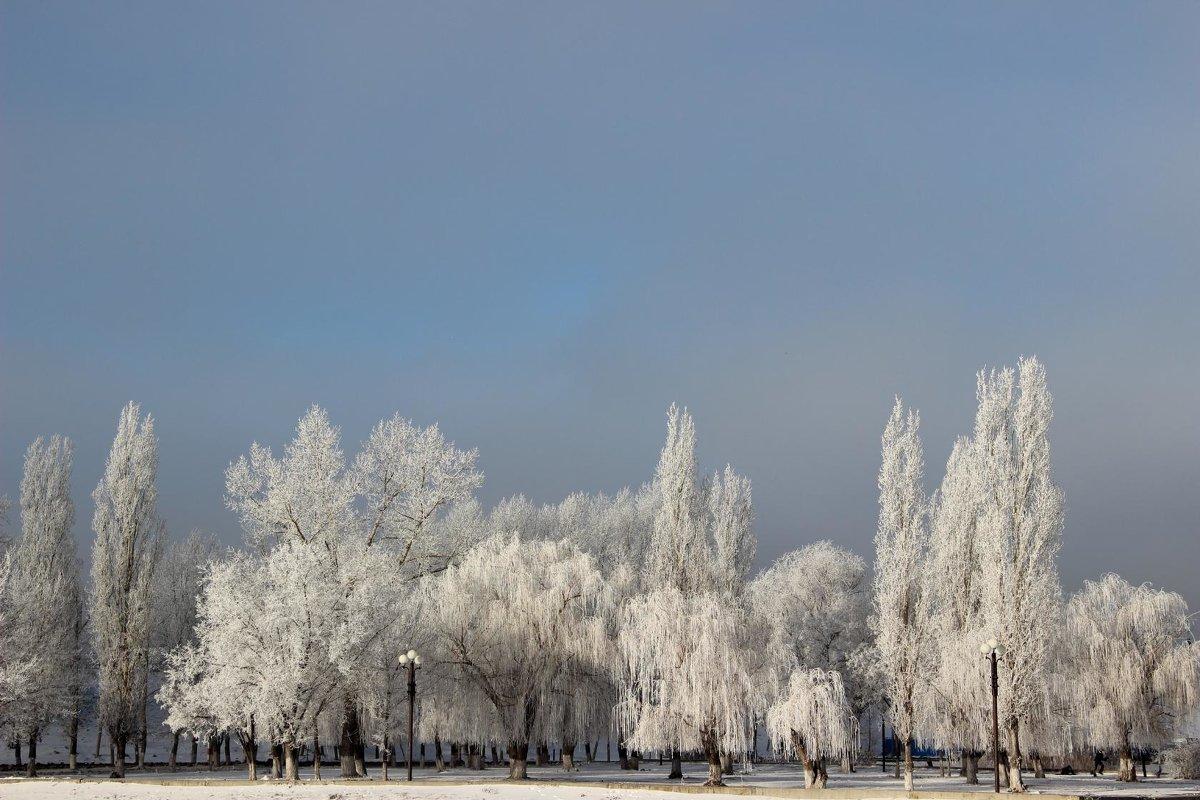 зима - °•♫•°❤ღ๑•°