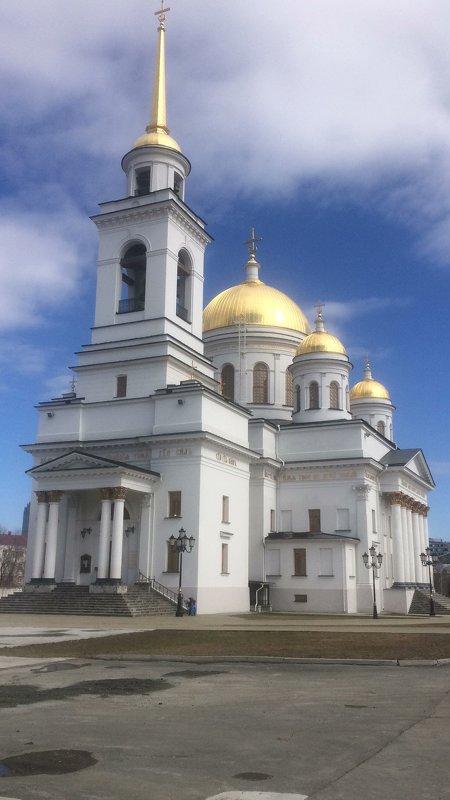 Александро-Невский собор - Евгений Пикаревский