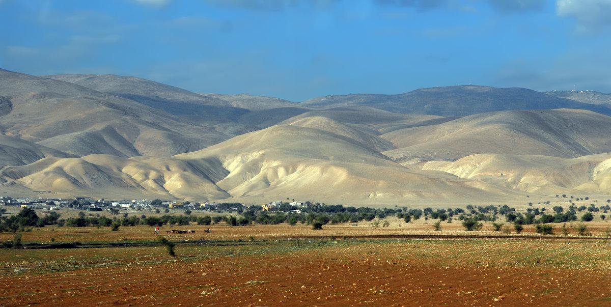 Пустыня Арава. - Надя Кушнир