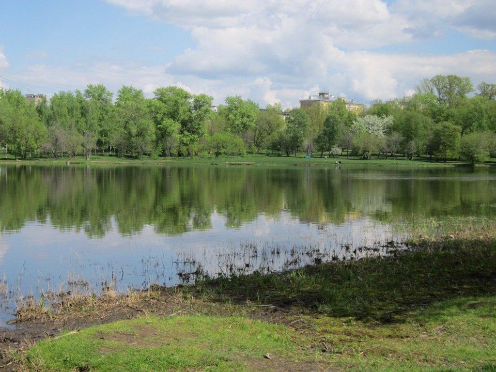 Головинские пруды в середине мая - Дмитрий Никитин