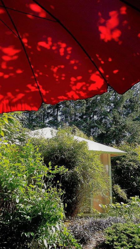 Под красным зонтом в знойный день - Валерий Розенталь