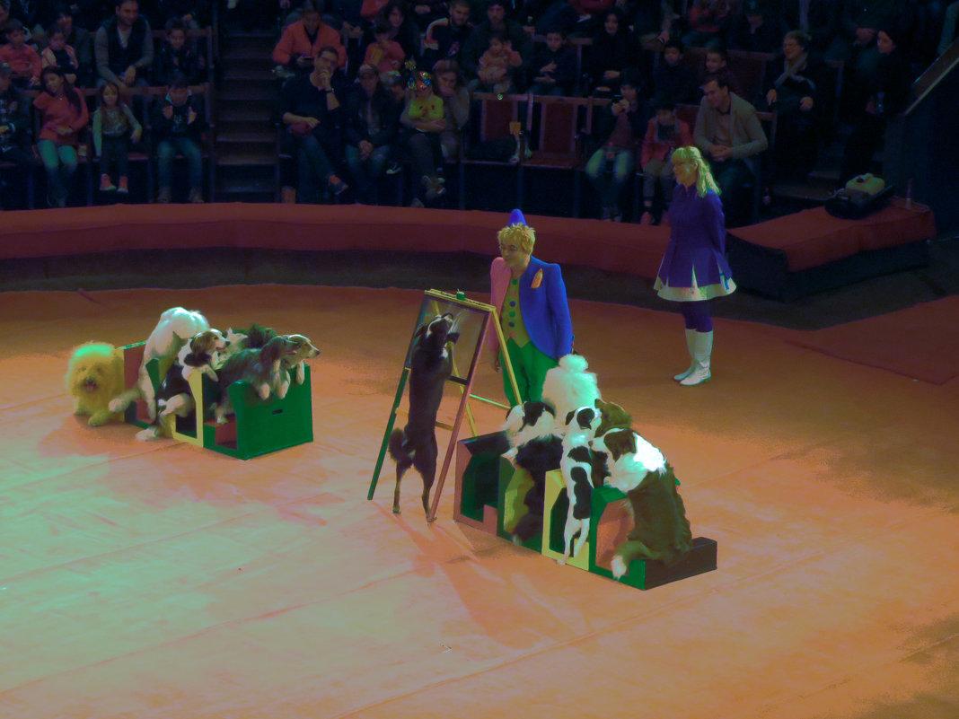 В цирке - Наталья (D.Nat@lia)