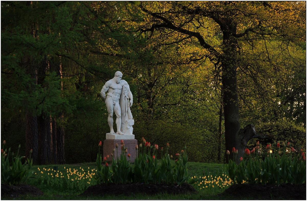 садовник:) - sv.kaschuk