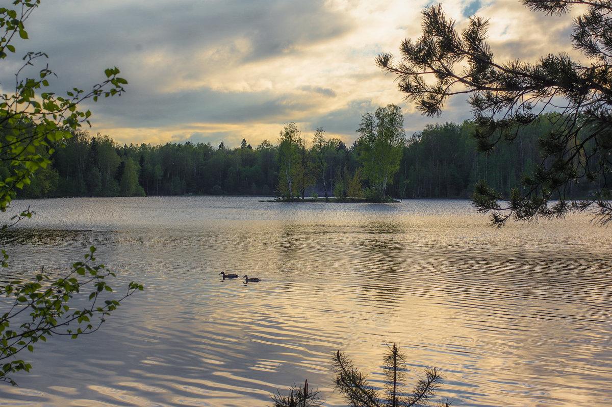 Закат на озере. - Вячеслав Криволуцкий