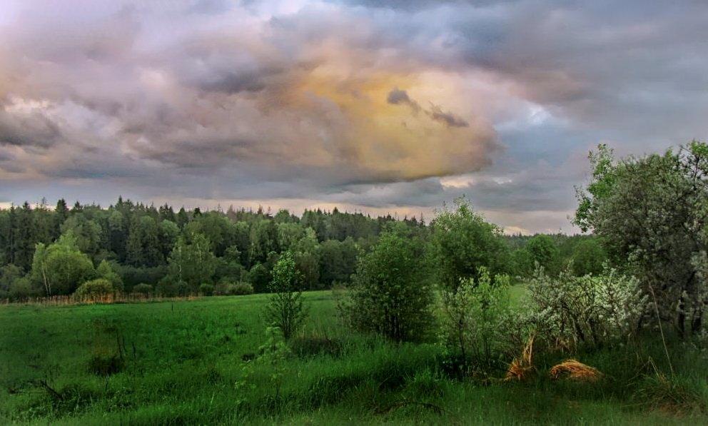 Весенний вечер после дождей - Лара Симонова