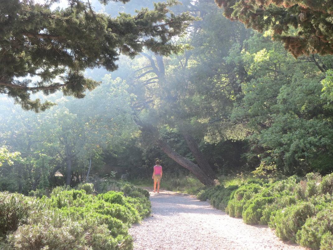 одинокая прогулка в тумане - Елена