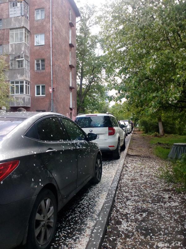 Главное удачно припарковаться! - Ольга НН