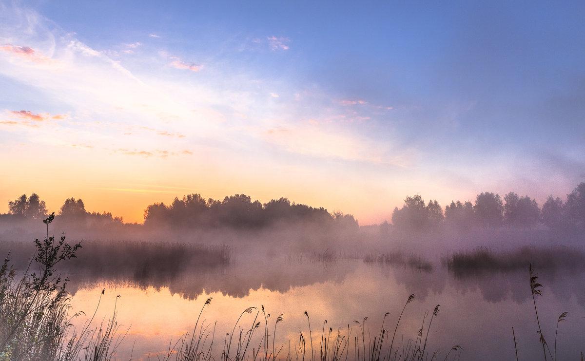 утро на болоте - Василий Иваненко