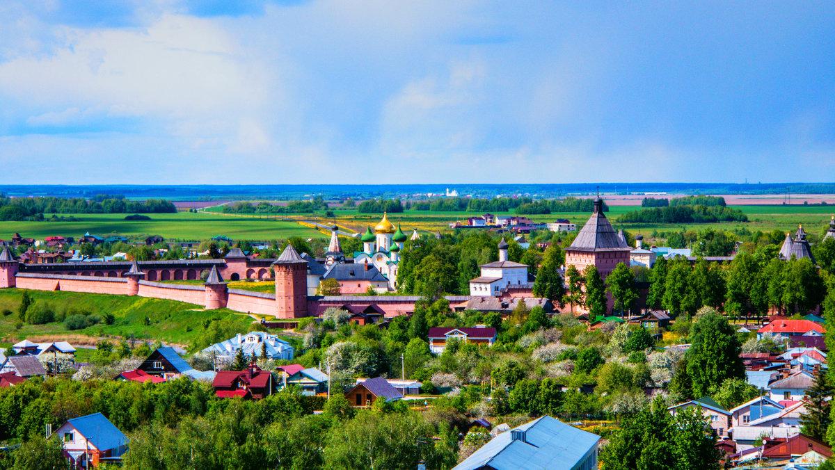 Вид с Ризоположенской колокольни на Спасо-Ефимиев монастырь - Dimirtyi