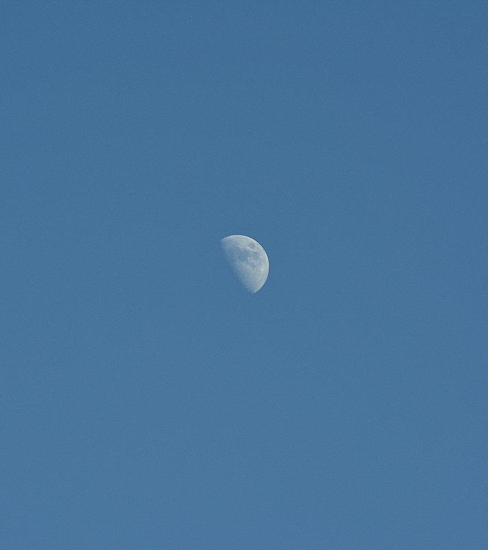 Луна днем... - Андрей Кобриков