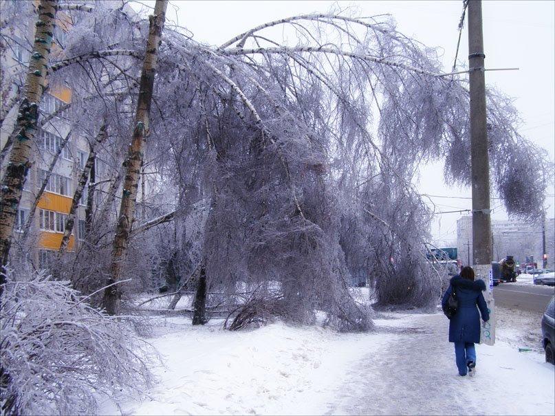 После ледяного дождя - Анна Воробьева
