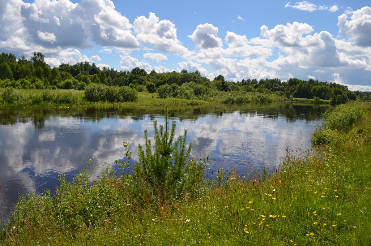 Река Западная Двина в городе Западная Двина... - Владимир Павлов