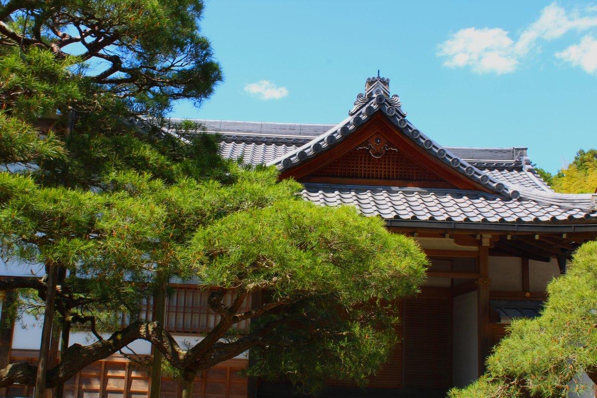 Где-то в Киото - Ольга Анх