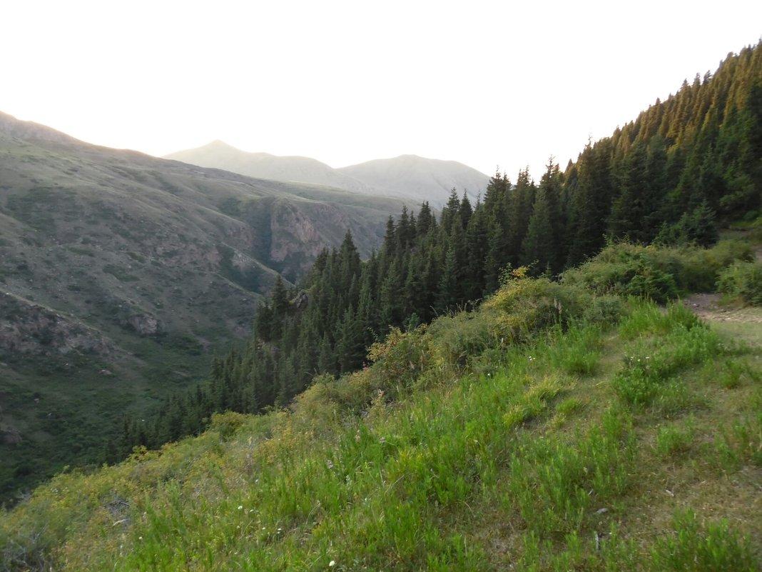 В горах - Андрей Солан
