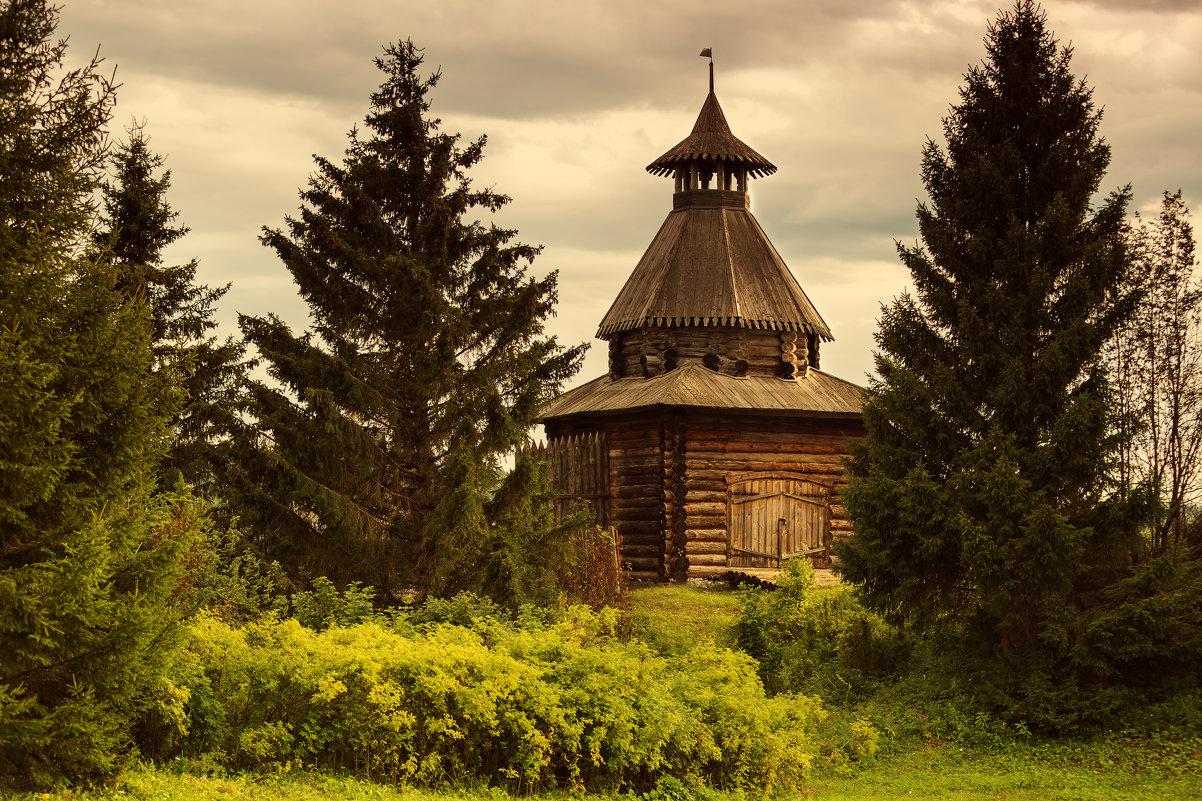 Сторожевая башня - Сергей Рогозин