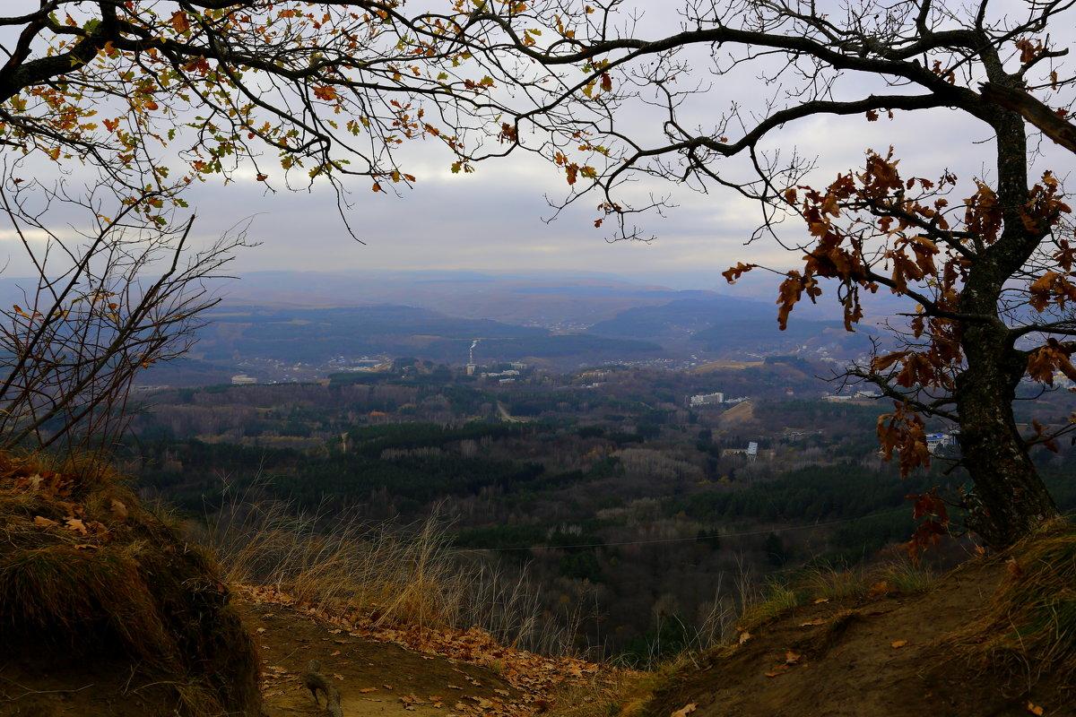 Уж небо осенью дышало... - Vladimir 070549