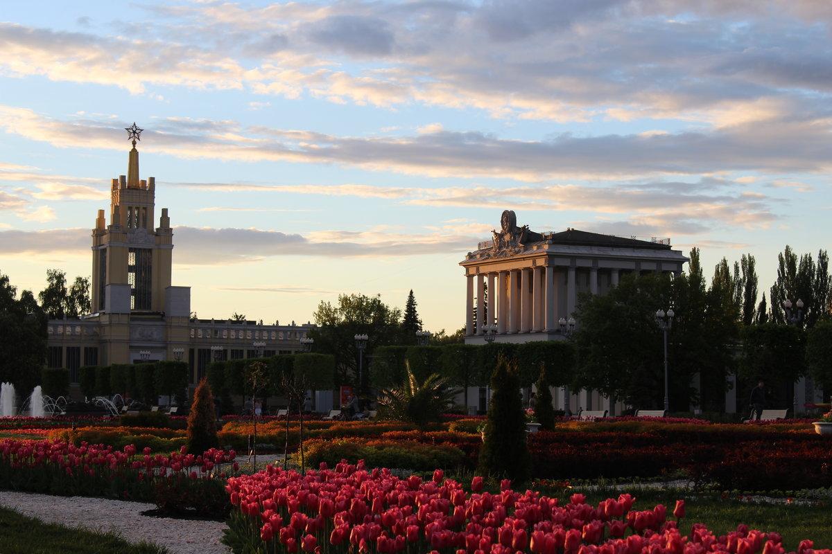ВДНХ, Москва. На закате. - Ольга Анх