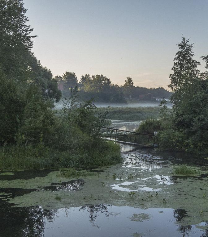 Утро на заросшей речке - Сергей Цветков