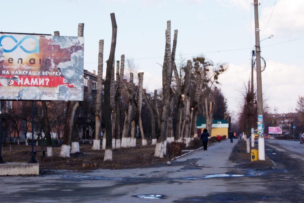 """""""Ландшафтный дизайн"""" - Владимир Корольков"""
