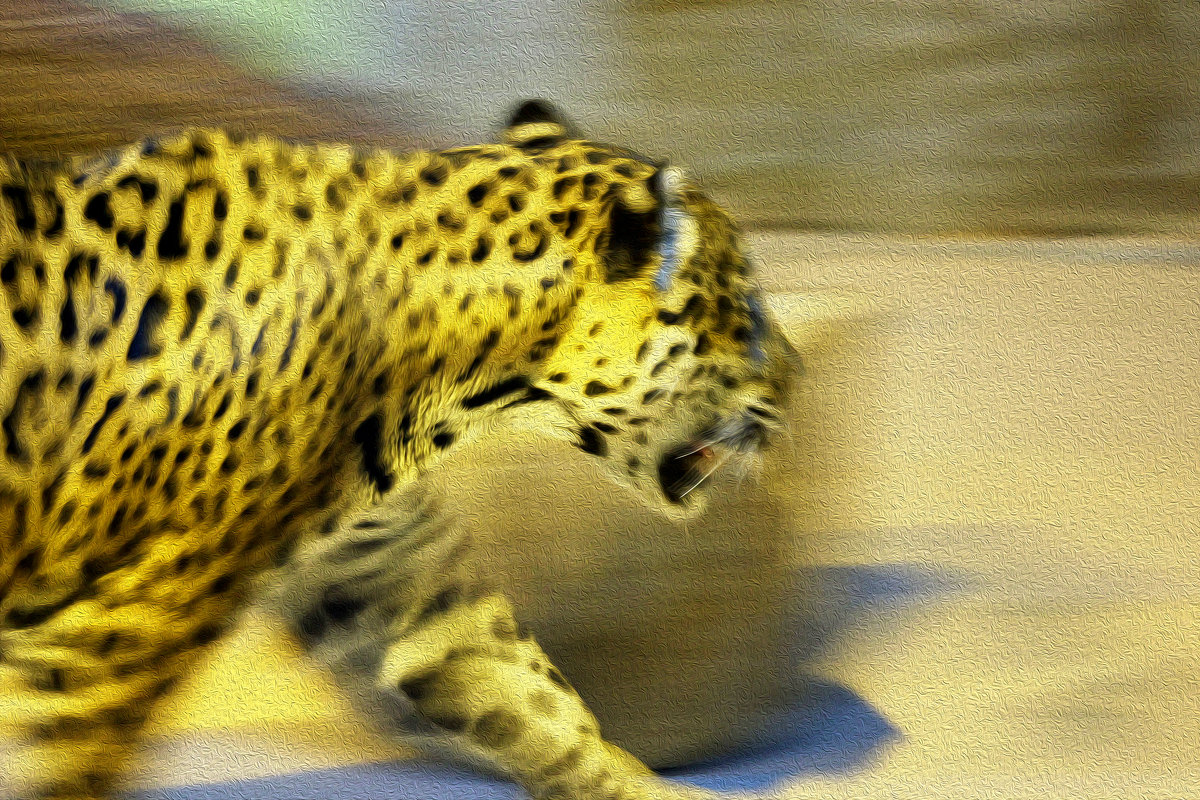 Портрет леопарда ) - Алексей Медведев