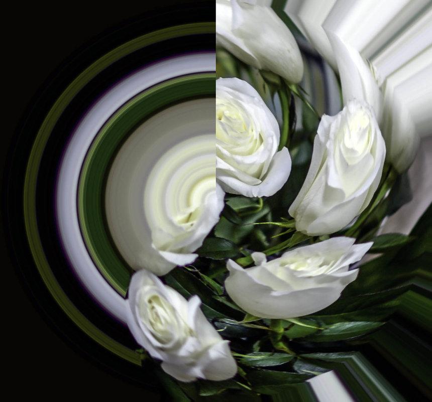 Белые розы на тарелочке - Tatiana Poliakova