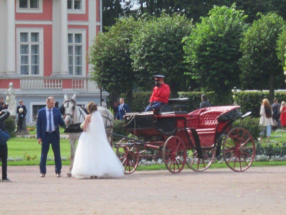 Архангельское. Свадьба в усадьбе - Дмитрий Никитин