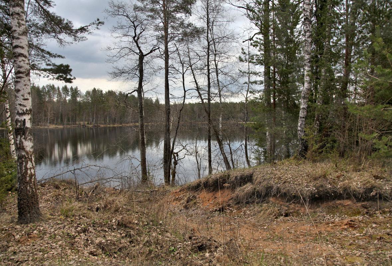 Лесное озеро - Наталья
