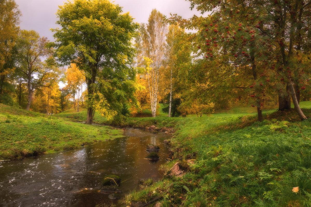 Осенний Ораниенбаум. - Юрий