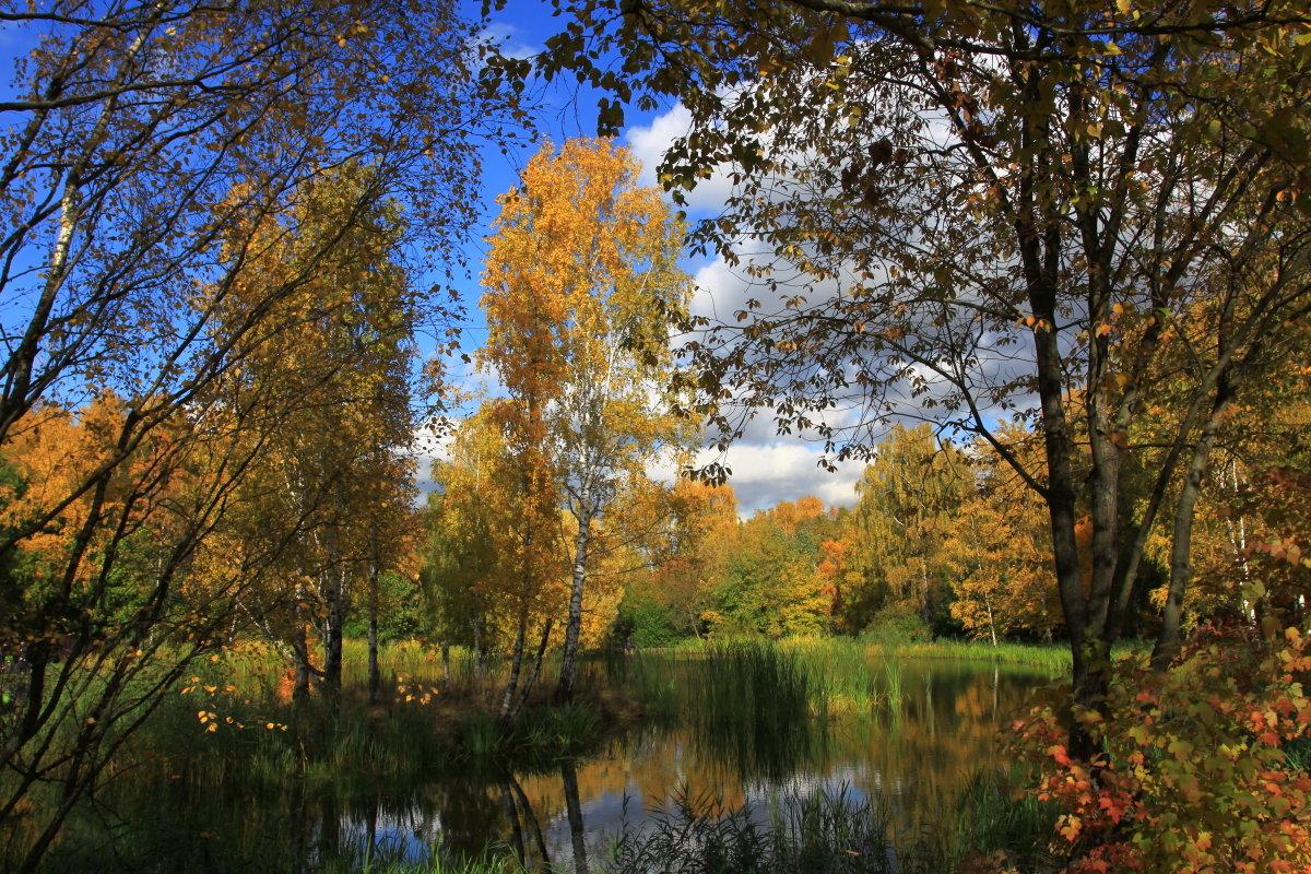 Осень в Ботаническом саду. (1) - Николай Кондаков