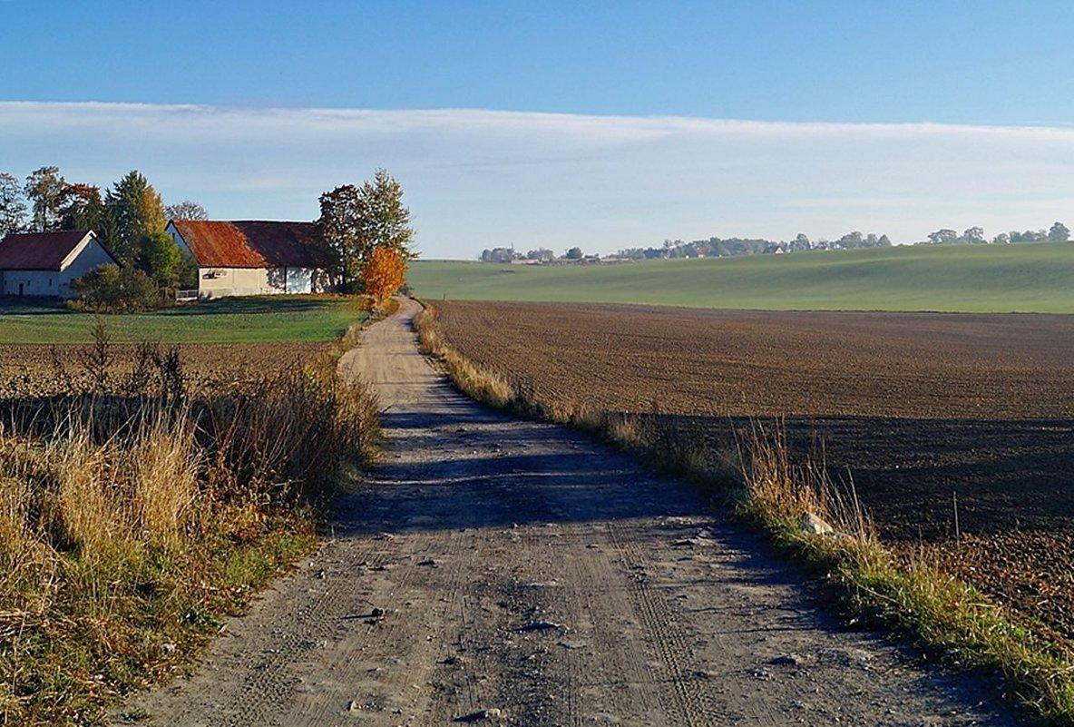 Дорога к деревне - donat