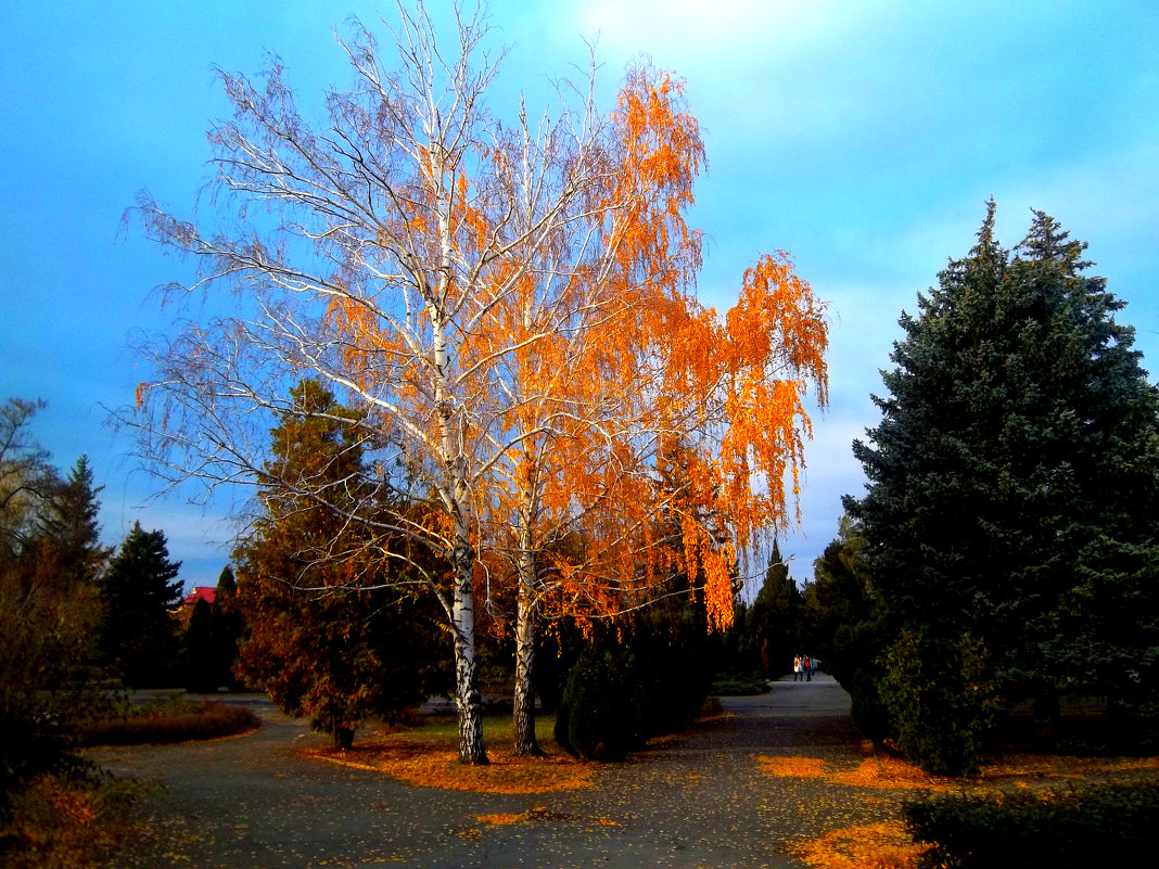 Осень в парке - Татьяна Королёва