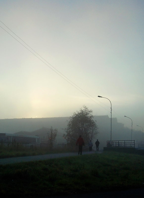 Туманный день... - Анна Приходько
