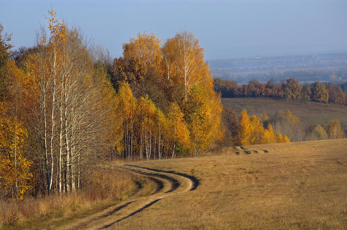 По дороге в золотую осень - Olenka