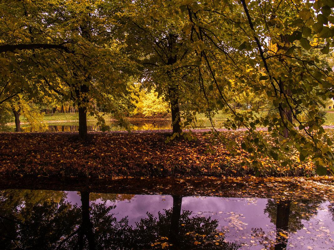 Осень в парке Екатерингоф. Санкт-Петербург - Елена Кириллова