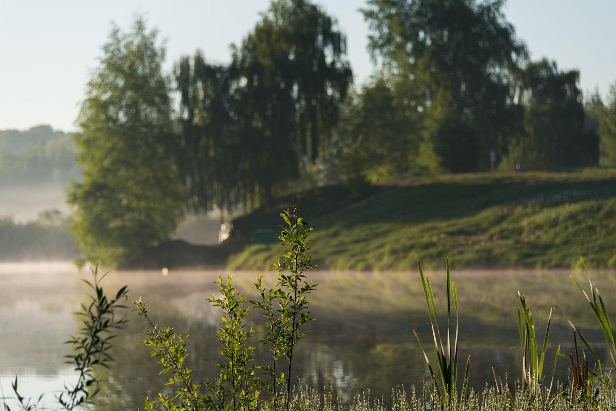 Туманным утром - Владимир Безбородов