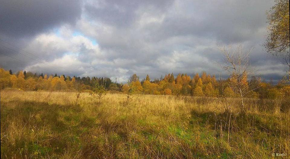 Осень - Валентина Ломакина